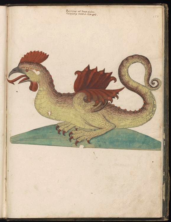 Dibujo medieval que muestra una cocatriz, una especie de híbrido entre gallo y dragón, que fue extremadamente popular en la época medieval. Vía Wikimedia Commons.