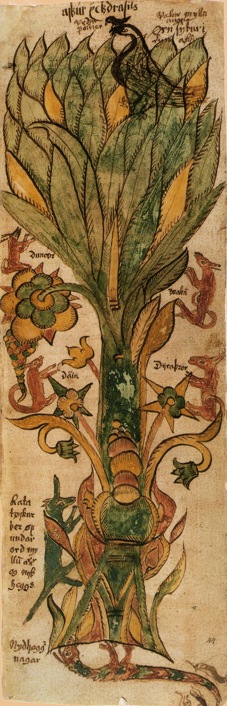 El árbol del mundo, el Yggdrasil, está habitado por una serie de fantasticos animales que dan una idea acerca de la concepción que los antiguos habitantes nórdicos tenían del universo como se puede ver en esat imagen tomada de n antiguo manuscrito.