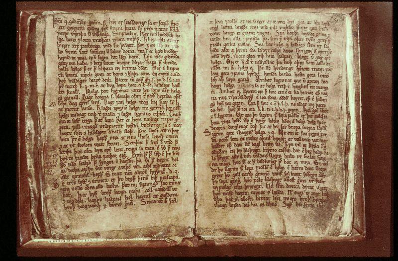 Los poemas que forman parte del Codex Regius sirvieron como base para la elaboración del Edda Mayor, una de las fuentes más importantes sobre los mitos nórdicos.